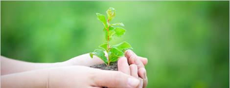 長期経営ビジョン / 環境方針のイメージ