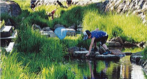 下水再生水(処理水)の利用のイメージ